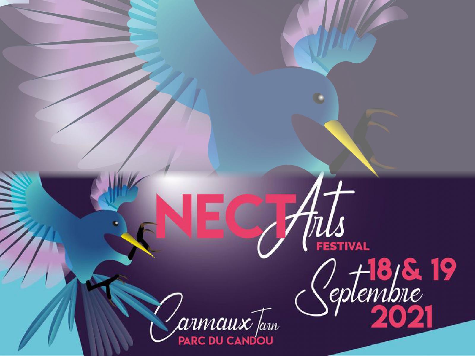 NECT'Arts festival