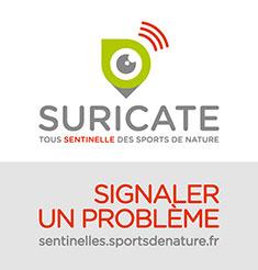 Suricate
